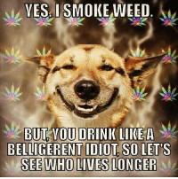 Drinking, Memes, and Live: VESISMO  WEED.  BUTOVOU DRINK LIKEA  BELLIGERENT IDIOT SO LET'S  SEE WHO LIVES LONGER