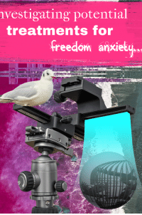 "Reddit, Anxiety, and Freedom: vestigating potential  treatments for  freedom anxiety,.  105  30 15 <p>[<a href=""https://www.reddit.com/r/surrealmemes/comments/82xp3f/claudia_once_told_me/"">Src</a>]</p>"
