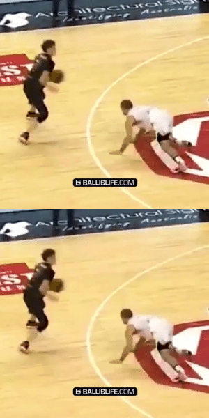LaMelo Ball breaking the defender's ankles TWICE in one play was insane! @MeloD1P @NBL #2019Rewind https://t.co/nIh4mFdcyo: VEt ectu alS  G BALLISLIFE.COM   tectural S  E  G BALLISLIFE.COM LaMelo Ball breaking the defender's ankles TWICE in one play was insane! @MeloD1P @NBL #2019Rewind https://t.co/nIh4mFdcyo