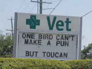 This quacked me up: Vet  ONE BIRD CAN'T  MAKE A PUN  BUT TOUCAN This quacked me up