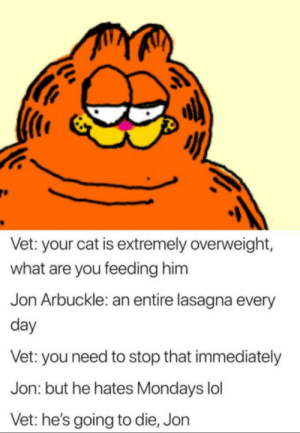 Stop Jon: Vet: your cat is extremely overweight,  what are you feeding him  Jon Arbuckle: an entire lasagna every  day  Vet: you need to stop that immediately  Jon: but he hates Mondays lol  Vet: he's going to die, Jon Stop Jon