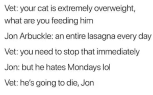 meirl by Fatmanfishperson MORE MEMES: Vet: your cat is extremely overweight,  what are you feeding him  Jon Arbukle: an entire lasagna every day  Vet: you need to stop that immediately  Jon: but he hates Mondays lol  Vet: he's going to die, Jon meirl by Fatmanfishperson MORE MEMES