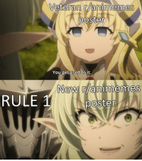 Animemes: Veteran r/animemes  poster  You get used to it.  New animemes  RULE poster
