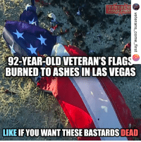 "America, Cars, and Memes: VETERAN SA  92-YEAR-OLD VETERAN'S FLAGSS  BURNED TO ASHESIN LAS VEGAS  LIKE IF YOU WANT THESE BASTARDS DEAD This post was reposted using @the.instasave.app theinstasaveapp ・・・ ""A 92-year-old veteran is heartbroken after three of his American flags and a U.S. Navy flag were burned to ashes. William Barclay says he went outside to let his dog go to the bathroom Wednesday morning when he noticed his U.S. Navy flag was burned to ashes and one of his American flags was in shreds. He also saw the two American flags flying on his car were burnt to ashes too. ""I picked up the flag like this and I said what the heck? What happened to my flag?"" Barclay was drafted into the Navy when he was 18 years old. He was a Signalman during World War II. That meant he was responsible for all messages via the American flag on his ship, the USS Stockdale. ""I handled the flag the whole two years I was there,"" he said. Barclay's time served in the Navy explains why he flies his flags so high and why they mean so much to him. He can't understand why someone would burn them. ""What I'm mad about is all I went through with this American flag on my ship and then I come home and put it up and somebody does this to me."" Methods of leftist activists, who are likely to blame for the epidemic of flag arsons, are very reminiscent of the actions of Nazi stormtroopers, who also looted shops, burned cars and flags. The main aim of the Left is to break the existing system and at any cost to discredit everything that is dear to hearts of all American patriots. The burning of flags can only be stopped by a harsh and inevitable punishment. veteranscomefirst veterans_us Veterans Usveterans veteransUSA SupportVeterans Politics USA America Patriots Gratitude HonorVets thankvets supportourtroops semperfi USMC USCG USAF Navy Army military godblessourmilitary soldier holdthegovernmentaccountable RememberEveryoneDeployed Usflag StarsandStripes"""