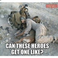 Friends, Memes, and Link: VETERANS  COME E1RST  CAN THESEHEROES  GET ONE LIKEP Let's see how many they can get!! (Repost @veterans_come_first - - ❎ DOUBLE TAP pic 🚹 TAG your friends 🆘 DM your Pics-Vids 📡 Check My IG Stories 💥Check the link in Bio 👉@veterancollection 🔥Follow us @veterancollection - - usarmy armylife usnavyseal navylife usarmy militarylife militarylove usmilitaryacademy navylife usmilitary veteran veterans supportthetroops supportourveterans goarmy usmilitary usnavy USMC USCG usmarines armedforces semperfi AirForce usairforce hooah Oorah armystrong infantry activeduty supportourtroops usarmedforces