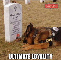 Thank you, to all the brave people and canines, who serve and keep America safe. God Bless You ALL! veterans_us Veterans Usveterans veteransUSA SupportVeterans Politics USA America Patriots Gratitude HonorVets thankvets supportourtroops RememberEveryoneDeployed Usflag StarsandStripes: VETERANS  COME FIRST  ADAM LEIGH  CANN  US MARINE CORES  1352  JAN JAN 5 1008  HEART  PURPLE K-9  ULTIMATE LOYALITY Thank you, to all the brave people and canines, who serve and keep America safe. God Bless You ALL! veterans_us Veterans Usveterans veteransUSA SupportVeterans Politics USA America Patriots Gratitude HonorVets thankvets supportourtroops RememberEveryoneDeployed Usflag StarsandStripes