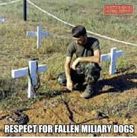 War Dogs, The Forgotten Heroes. Approximately 4,000 War Dogs served our Armed Forces during The Vietnam War. veterans_us Veterans Usveterans veteransUSA SupportVeterans Politics USA America Patriots Gratitude HonorVets thankvets supportourtroops semperfi USMC USCG USAF Navy Army military godblessourmilitary soldier holdthegovernmentaccountable RememberEveryoneDeployed Usflag StarsandStripes: VETERANS  COME FIRST  RESPECTFORFALLEN MILIARY DOGS War Dogs, The Forgotten Heroes. Approximately 4,000 War Dogs served our Armed Forces during The Vietnam War. veterans_us Veterans Usveterans veteransUSA SupportVeterans Politics USA America Patriots Gratitude HonorVets thankvets supportourtroops semperfi USMC USCG USAF Navy Army military godblessourmilitary soldier holdthegovernmentaccountable RememberEveryoneDeployed Usflag StarsandStripes