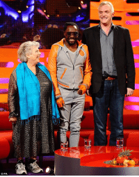 Go to Sleep, Target, and Tumblr: vezarina:  godiseven:  giddyirresponsibility:  Miriam Margolyes, will.i.am and Greg Davies  For vexarina the nanny from Romeo and Juliet and Greg Davies. I can now go to sleep happy.
