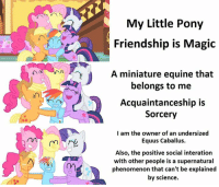my little: VI  My Little Pony  Friendship is Magic  A miniature equine that  belongs to me  Acquaintanceship is  Sorcery  I am the owner of an undersized  Equus Caballus.  Also, the positive social interation  with other people is a supernatural  phenomenon can't be explained  by science.