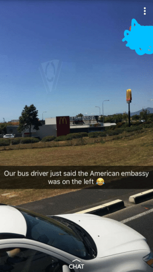 Savage, American, and Chat: vi  Our bus driver just said the American embassy  was on the left  CHAT Australians are savage