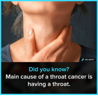 Memes, The More You Know, and Cancer: VIA 8SHIT  Did vou know  Main cause of a throat cancer is  having a throat. The more you know