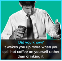 Drinking, Memes, and Coffee: VIA 8SHIT  Did you know?  It wakes you up more when you  spill hot coffee on yourself rather  than drinking it. Lifehack 😂