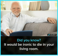 Ironic, Memes, and Living: VIA 8SHIT  Did you know?  It would be ironic to die in your  living room.