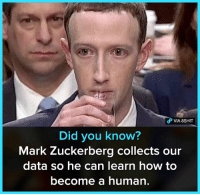 Mark Zuckerberg, Memes, and How To: VIA 8SHIT  Did you know?  Mark Zuckerberg collects our  data so he can learn how to  become a human.