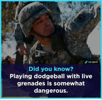 Dodgeball, Memes, and Live: VIA 8SHIT  Did you know?  Playing dodgeball with live  grenades is somewhat  dangerous.