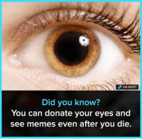 See Memes: VIA 8SHIT  Did you know?  You can donate your eyes and  see memes even after you die.