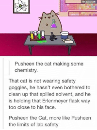Damn it Pusheen!: VIA 9GAG.COM  Push een the cat making some  chemistry.  That cat is not wearing safety  goggles, he hasn't even bothered to  clean up that spilled solvent, and he  is holding that Erlenmeyer flask way  too close to his face.  Pusheen the Cat, more like Pusheen  the limits of lab safety Damn it Pusheen!