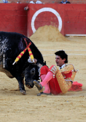 9gag, Heart, and Today: VIA 9GAG.COM So a matador got killed by a Bull Today. penetrated his heart.. cant say Im complaining.