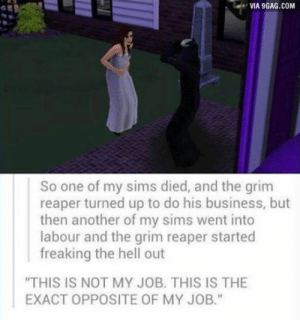"""9gag, Business, and Sims: VIA 9GAG.COM  So one of my sims died, and the grim  reaper turned up to do his business, but  then another of my sims went into  labour and the grim reaper started  freaking the hell out  """"THIS IS NOT MY JOB. THIS IS THE  EXACT OPPOSITE OF MY JOB."""" The grim reaper just cant handle it"""