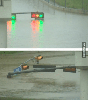 9gag, Houston, and Water: VIA 9GAG.COM The water got a little high in Houston this morning