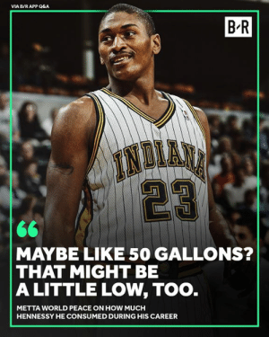 😂: VIA B/R APP Q&A  B-R  MAYBE LIKE 50 GALLONS?  THAT MIGHT BE  A LITTLE LOW, TOO  METTA WORLD PEACE ON HOW MUCH  HENNESSY HE CONSUMED DURING HIS CAREER 😂