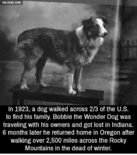 We don't deserve dogs. 😢 9GAG Mobile App: www.9gag.com/mobile?ref=9fbp  http://9gag.com/gag/apLDyj5?ref=fbp: VIA gGAG.COM  In 1923, a dog walked across 2/3 of the U.S.  to find his family. Bobbie the Wonder Dog was  traveling with his owners and got lost in Indiana.  6 months later he returned home in Oregon after  walking over 2,500 miles across the Rocky  Mountains in the dead of winter. We don't deserve dogs. 😢 9GAG Mobile App: www.9gag.com/mobile?ref=9fbp  http://9gag.com/gag/apLDyj5?ref=fbp