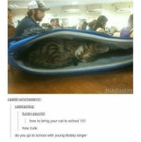 Cute, Memes, and School: via likeAlaugh.org  catshaming:  fuckin-psycho  how to bring your cat to school 101  how cute  do you go to school with young Bobby singer That moment you realize that you've gone through puberty and you'll be this ugly forever. . . . Supernatural deanwinchester samwinchester jaredpadalecki jensenackles destiel castiel mishacollins hellismybitch