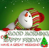 Memes, And Funny, and 🤖: via Love ThisPic.com  COOD MORNING  AN DID  FRID  HAVE A GREAT WEEKEND For more holiday, retro, and funny pictures go to... www.snowflakescottage.com