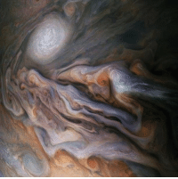 "Memes, Nasa, and Taken: (via @nasajuno) ""Jovian close encounter. A multitude of magnificent, swirling clouds in Jupiter's dynamic North North Temperate Belt is captured in this image from NASA's Juno spacecraft. . This color-enhanced image was taken on Oct. 29, 2018 as the spacecraft performed its 16th close flyby of Jupiter. At the time, Juno was about 4,400 miles (7,000 kilometers) from the planet's cloud tops, at a latitude of approximately 40 degrees north."" . Follow @nasajuno for even more stunning imagery! . NASA Juno Jupiter space science astronomy photography citizenscience"