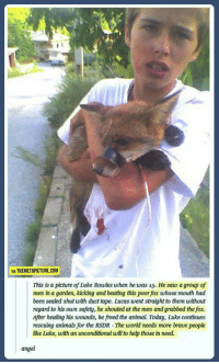 Animals, Saw, and Angel: VIA THEMETAPICTURE.COM  This is a picture of Luke Rowles when he was 15. He saw a group of  men in a garden, kicking and beating this poor fox whose mouth had  been sealed shut with duct tape. Lucas went straight to them without  regard to his own safety, he shouted at the men and grabbed the fox.  After healing his woumds, he freed the animal. Today, Luke continues  rescuing animals for the RSDR - The world needs more brave people  ike Luke, with an unconditional will to hep those in need.  angel Kid saves fox!