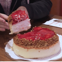 Memes, Wshh, and 🤖: Via: @ThisIsInsider & @InsiderDessert- This cheesecake from Juniors in NewYork looks serious! Would you try it? 🍰😳🤔 @JuniorsCheesecake WSHH