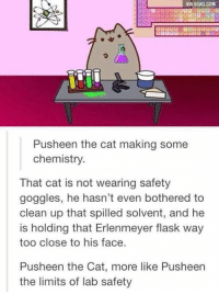 Damn it Pusheen! http://9gag.com/gag/aNK3nn6?ref=fbp: VIA9GAG.COM  Push een the cat making some  chemistry.  That cat is not wearing safety  goggles, he hasn't even bothered to  clean up that spilled solvent, and he  is holding that Erlenmeyer flask way  too close to his face  Pusheen the Cat, more like Pusheen  the limits of lab safety Damn it Pusheen! http://9gag.com/gag/aNK3nn6?ref=fbp