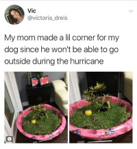 Memes, Good, and Hurricane: Vic  @victoria_dreis  My mom made a lil corner for my  dog since he won't be able to go  outside during the hurricane GOOD MOM