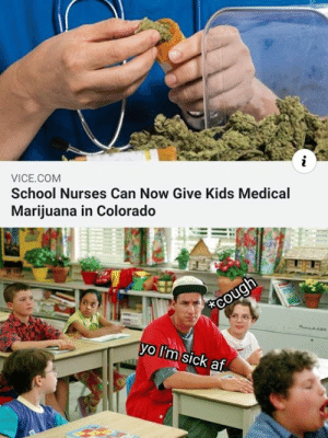 Af, Memes, and School: VICE.COM  School Nurses can Now Give Kids Medical  Marijuana in Colorado  vo I'm sick af