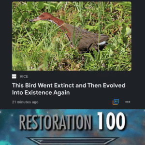 Evolution 100 by Mighty_Woodchuck MORE MEMES: VICE  This Bird Went Extinct and Then Evolved  Into Existence Again  21 minutes ago  RESTORATION 100 Evolution 100 by Mighty_Woodchuck MORE MEMES