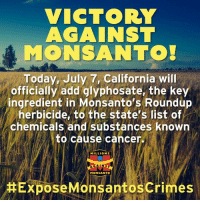 Memes, California, and Cancer: VICTORY  AGAINST  MONSANTO  Today, July 7, California will  officially add glyphosate, the key  ingredient in Monsanto's Roundup  herbicide, to the state's list of  chemicals and substances known  to cause cancen  MILLIONS  AGAINS  MONSANTO  Expose Monsantoscrimes Every activist who engaged in this fight deserves to take a moment to bask in this victory. It's not everything we need, or everything we want —but California's decision, upheld by the courts, represents a major step forward in a decades-long fight to expose the truth about Roundup and protect the public from its cancer-causing effects. http://orgcns.org/2uQjdrI