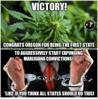 Memes, Victorious, and 🤖: VICTORY!  CONGRATSOREGON FOR BEING THE FIRST  STATE  TOAGGRESSIVELY START EXPUNGING  MARIJUANA CONVICTIONSI  LIKE IFYOUTHINK ALL STATES SHOULD DO THIS!