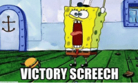 victory: VICTORY SCREECH