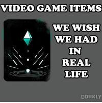 Life, Memes, and Video: VIDEO GAMEITEMS  WEWISH  WEHAD  IN  I// REAL  C.  DORKLY What do you need in your life?