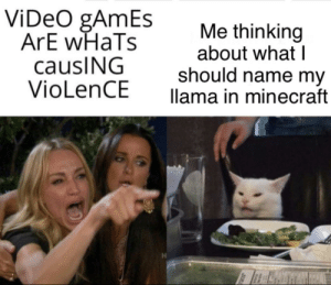 I named it Brad: ViDeO gAmEs  ArE wHaTs  causING  VioLenCE  Me thinking  about what I  should name my  llama in minecraft I named it Brad