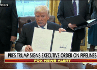 Memes, Access, and Fox News: VIDEO  PRES TRUMP SIGNS EXECUTIVE ORDER ON PIPELINES  Fox NEWS ALERT JUST IN: President DonaldTrump​ signs executive orders advancing the construction of the Keystone XL and Dakota Access pipelines. KeystonePipeline DakotaAccessPipeline