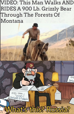 Bear, Montana, and Putin: VIDEO: This Man Walks AND  RIDES A 900 Lb. Grizzly Bear  Through The Forests Of  |Montana  What's this? Russia? Putin, is that you?