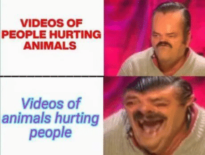 Animals, Videos, and Reality: VIDEOS OF  PEOPLE HURTING  ANIMALS  Videos of  animals hurting  people Reality