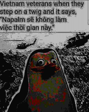Vietnam war: Vietnam veterans when they  step on a twig and it says  Napalm se không lam  viec thoi gian nay Vietnam war