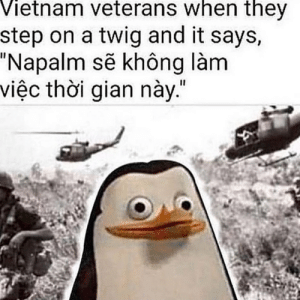 """""""Heavy shooting noise in the background"""": Vietnam veterans when they  step on a twig and it says,  """"Napalm se không làm  việc thoi gian này."""" """"Heavy shooting noise in the background"""""""