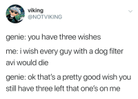 viking  @NOTVIKING  genie: you have three wishes  me: i wish every guy with a dog filter  avi would die  genie: ok that's a pretty good wish you  still have three left that one's on me