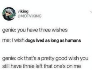 I would do that: viking  @NOTVIKING  genie: you have three wishes  me: i wish dogs lived as long as humans  genie: ok that's a pretty good wish you  still have three left that one's on me I would do that