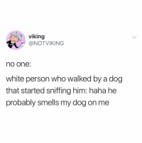 wow @notvikingtweets: viking  @NOTVIKING  no one:  white person who walked by a dog  that started sniffing him: haha he  probably smells my dog on me wow @notvikingtweets