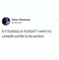 Fuckboy, Girl Memes, and Viktor: Viktor Winetrout  @Cpin42  Is it fuckboy or fuckboi? I want my  Linkedln profile to be perfect. There's a huge difference between and fuckboy and a fuckboi