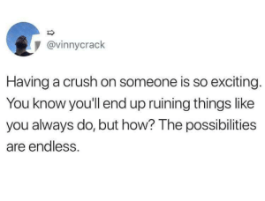 A Crush: @vinnycrack  Having a crush on someone is so exciting.  You know you'll end up ruining things like  you always do, but how? The possibilities  are endless.